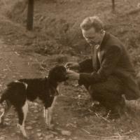 1940-zwierzaki