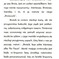 1994_bretek_1